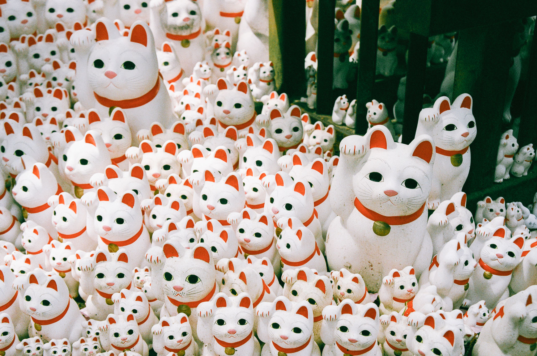 Collection of lucky cats