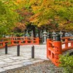 Red bridge amongst green trees in Koyasan