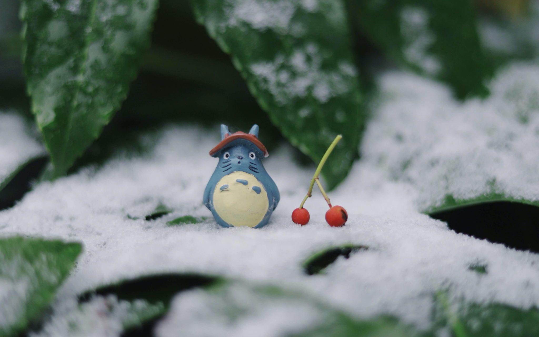 Totoro anime figure